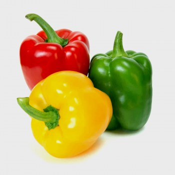 Red Green Yellow Pepper /lb